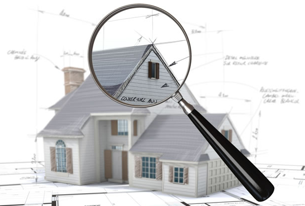 pre-purchase property inspection